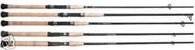 eupro inshore grahite diamon series fishing rods.